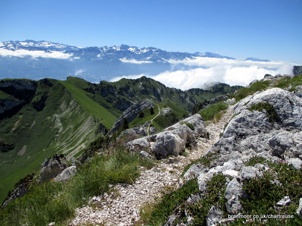 The final section of ridge path before the summit of Lance de Malissard Sud