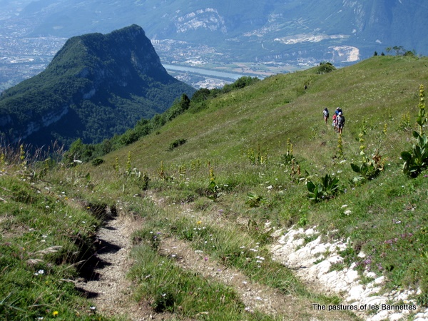 Photograph of the pastures of les Bannettes on the Grande Sure