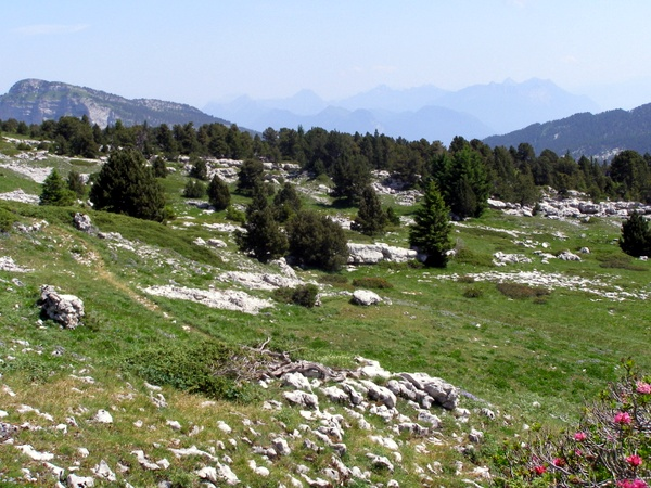 The Prarie on l'Alpe